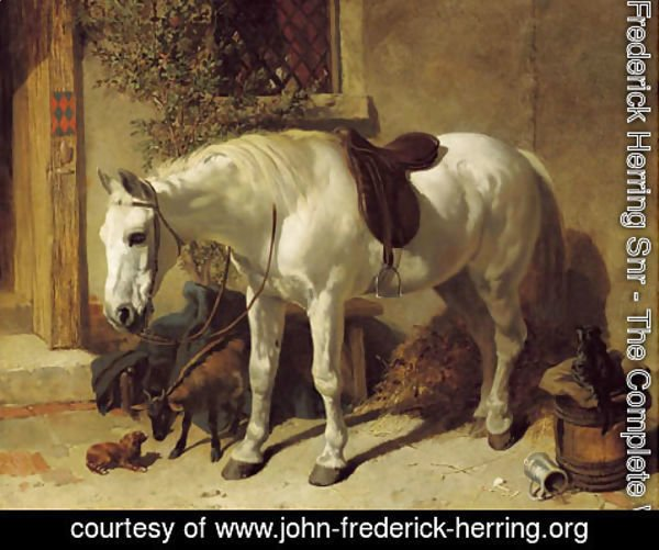 John Frederick Herring Snr - A grey horse, with a goat, a toy spaniel