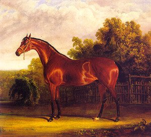 John Frederick Herring Snr - Negotiator the Bay Horse in a Landscape  1826